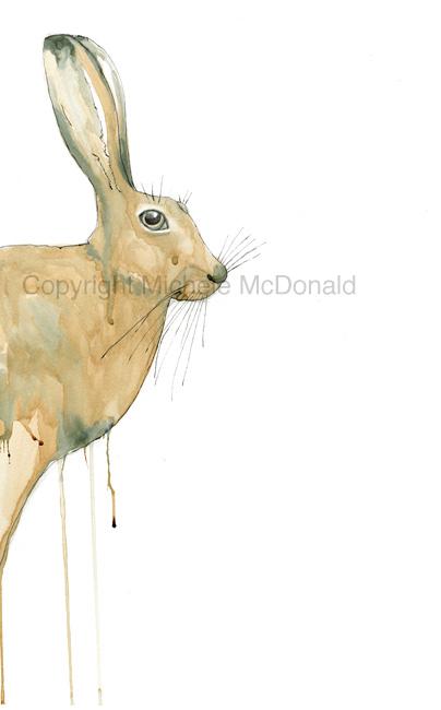 Peeking Hare Artwork